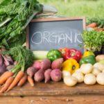 Ce avantaje au alimentele bio?